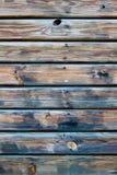 παλαιό δάσος Στοκ φωτογραφίες με δικαίωμα ελεύθερης χρήσης