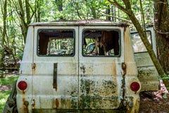 Παλαιό άσπρο φορτηγό στα ξύλα Στοκ Εικόνες