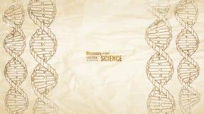 Παλαιό έγγραφο με το DNA διανυσματική απεικόνιση