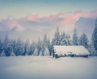 Παλαιό αγρόκτημα μετά από τις τεράστιες χιονοπτώσεις Στοκ Εικόνες