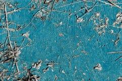 Παλαιό ανοικτό μπλε κατασκευασμένο υπόβαθρο με τα κομμάτια των ξηρών εγκαταστάσεων Στοκ φωτογραφία με δικαίωμα ελεύθερης χρήσης