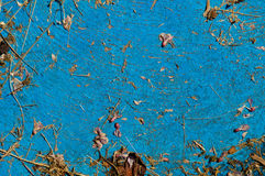 Παλαιό ανοικτό μπλε κατασκευασμένο υπόβαθρο με τα κομμάτια των ξηρών εγκαταστάσεων Στοκ Εικόνες