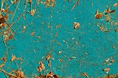 Παλαιό ανοικτό μπλε κατασκευασμένο υπόβαθρο με τα κομμάτια των ξηρών εγκαταστάσεων Στοκ Φωτογραφίες