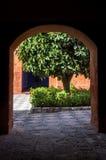 Παλαιό αποικιακό μοναστήρι Arequipa, Περού Στοκ Εικόνες