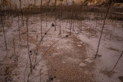 Παλαιό αχρησιμοποίητο ορυχείο καολίνη Στοκ Φωτογραφία
