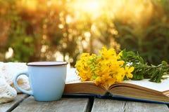 παλαιό βιβλίο, φλιτζάνι του καφέ δίπλα στα λουλούδια τομέων Στοκ φωτογραφία με δικαίωμα ελεύθερης χρήσης