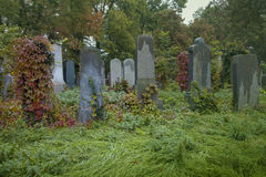 Παλαιό εβραϊκό νεκροταφείο Στοκ Εικόνα