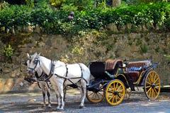 Παλαιό λεωφορείο ύφους με τα άλογα Στοκ Εικόνες