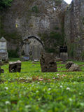 Παλαιό ιρλανδικό νεκροταφείο Στοκ Εικόνα