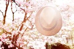 Παλαιό καπέλο αχύρου ενάντια συνημμένος σε εγκαταστάσεις μέσα Στοκ φωτογραφίες με δικαίωμα ελεύθερης χρήσης