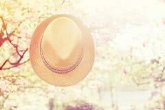 Παλαιό καπέλο αχύρου ενάντια συνημμένος σε εγκαταστάσεις μέσα Στοκ Εικόνες