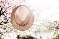 Παλαιό καπέλο αχύρου ενάντια συνημμένος σε εγκαταστάσεις μέσα Στοκ εικόνα με δικαίωμα ελεύθερης χρήσης