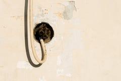 Παλαιό καλώδιο σκοινιού δύναμης Στοκ Εικόνα