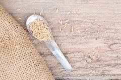Παλαιό κουτάλι με ξύλινο Στοκ Εικόνα