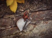 Παλαιό κλειδί με την ξύλινη καρδιά Στοκ φωτογραφία με δικαίωμα ελεύθερης χρήσης