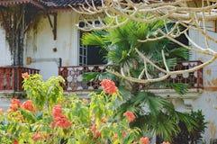Παλαιό μπαλκόνι του σπιτιού Menezes Braganza Pereira Στοκ εικόνα με δικαίωμα ελεύθερης χρήσης