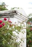 Παλαιό νεκροταφείο Νέα Ορλεάνη Στοκ εικόνες με δικαίωμα ελεύθερης χρήσης