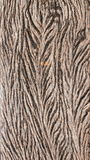 Παλαιό ξύλινο ίδιο φύλλο σύστασης Στοκ εικόνες με δικαίωμα ελεύθερης χρήσης