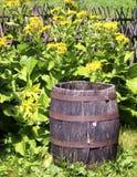 Παλαιό ξύλινο βαρέλι κρασιού Στοκ Εικόνα