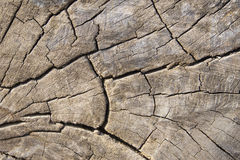 Παλαιό ξύλινο υπόβαθρο συστάσεων Στοκ Εικόνα