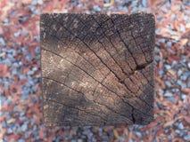 Παλαιό ξύλινο υπόβαθρο σύστασης στον κήπο Στοκ εικόνες με δικαίωμα ελεύθερης χρήσης