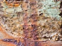 Παλαιό ξύλο χρησιμοποιούμενο Σύνολο των σκουριασμένων λεκέδων στοκ εικόνες με δικαίωμα ελεύθερης χρήσης
