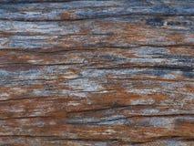 Παλαιό ξύλο Στοκ Εικόνες