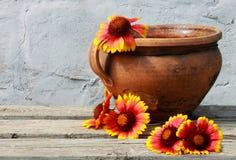 Παλαιό δοχείο αργίλου με τα ζωηρόχρωμα λουλούδια Στοκ Φωτογραφία