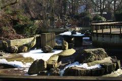 Παλαιό πάρκο ζωολογικών κήπων Στοκ εικόνα με δικαίωμα ελεύθερης χρήσης