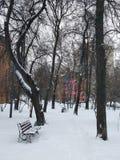 Παλαιό πάρκο, πάγκος Στοκ Εικόνα