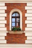 Παλαιό παράθυρο με τα λουλούδια Στοκ Εικόνα