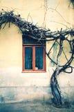 Παλαιό παράθυρο με το ραγισμένο χρώμα, εκλεκτής ποιότητας υπόβαθρο τουβλότοιχος με το παλαιό παράθυρο Στοκ εικόνες με δικαίωμα ελεύθερης χρήσης