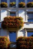Παλαιό πεζούλι τοίχων και λουλουδιών   κέντρο   από την πόλη Λουγκάνο Στοκ Φωτογραφίες