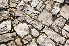Παλαιό πεζοδρόμιο κυβόλινθων με το βρύο Στοκ Εικόνες