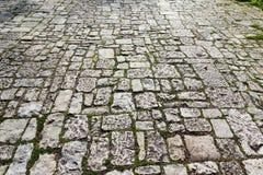 Παλαιό πεζοδρόμιο κυβόλινθων με το βρύο Στοκ εικόνα με δικαίωμα ελεύθερης χρήσης