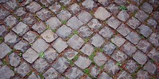 Παλαιό πεζοδρόμιο Πέτρινο οδόστρωμα με τη χλόη Ρώμη Στοκ φωτογραφίες με δικαίωμα ελεύθερης χρήσης