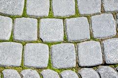 Παλαιό πεζοδρόμιο της γκρίζας πέτρας με το βρύο Στοκ Εικόνα