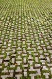 Παλαιό πεζοδρόμιο των κεραμιδιών πετρών Στοκ εικόνα με δικαίωμα ελεύθερης χρήσης