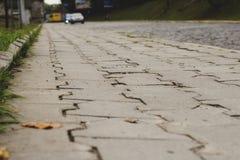 Παλαιό πεζοδρόμιο των κεραμιδιών σε Lviv Στοκ εικόνα με δικαίωμα ελεύθερης χρήσης