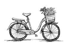 Παλαιό ποδήλατο - χέρι απεικόνισης σκίτσων που σύρεται Στοκ Εικόνες