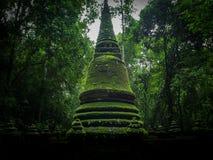 Παλαιό πράσινο stupa στη φύση Στοκ Φωτογραφίες