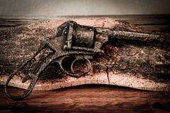 Παλαιό πυροβόλο όπλο στο ξύλο Στοκ Εικόνα
