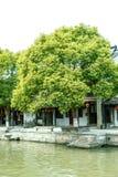 Παλαιό σπίτι και μεγάλο δέντρο κατά μήκος του ποταμού στοκ εικόνες με δικαίωμα ελεύθερης χρήσης