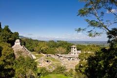 Παλαιό των Μάγια piramide, Palenque, Μεξικό Στοκ Φωτογραφία