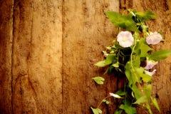 Παλαιό υπόβαθρο αμπέλων ξύλου και λουλουδιών Στοκ Φωτογραφίες