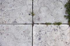 Παλαιό υπόβαθρο πετρών με κάποια χλόη σε το Στοκ φωτογραφίες με δικαίωμα ελεύθερης χρήσης