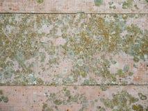Παλαιό χρωματισμένο πάτωμα Στοκ εικόνα με δικαίωμα ελεύθερης χρήσης
