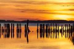 Παλαιό groyne στο ηλιοβασίλεμα Στοκ φωτογραφία με δικαίωμα ελεύθερης χρήσης