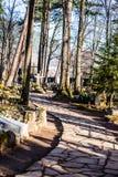 Παλαιό NA Peksowym Brzyzku νεκροταφείων σε Zakopane στην Πολωνία Στοκ εικόνα με δικαίωμα ελεύθερης χρήσης
