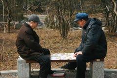 Παλιοί φίλοι που παίζουν ένα παιχνίδι Στοκ Εικόνες